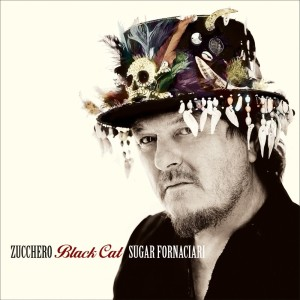 11-Zucchero Black Cat